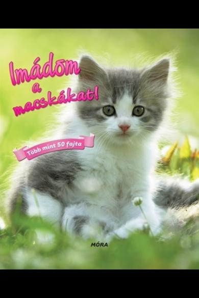 Imádom a macskákat! - Több mint 50 fajta